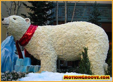 dec-10-09-vegas-polar-bear
