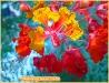 funky-flowers-2