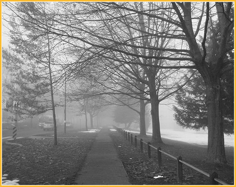 jan-23-east-van-fog